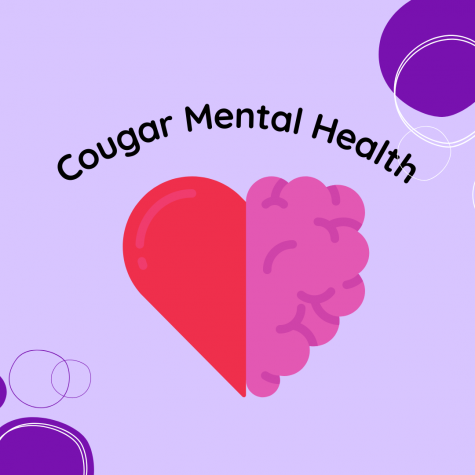 Cougar Mental Health with Being Back In-Person